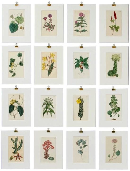 botanical_1stdibs