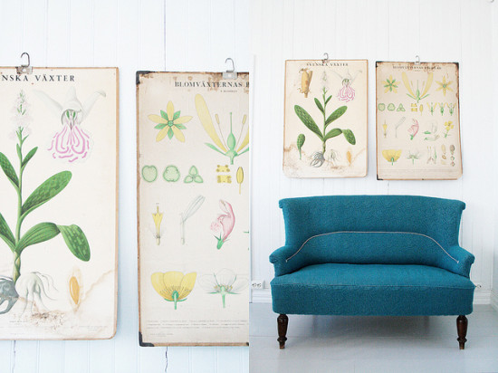 botanical_jeanette_lunde