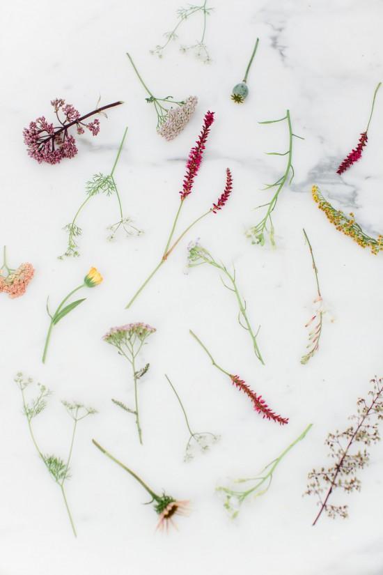 DIY Wildflower Arrangement  // Styling & Concept: Holly Marder / Avenue Lifestyle // Photography: Anouschka Rokebrand