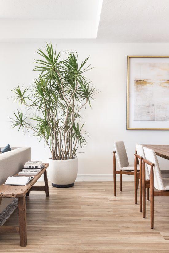 Project Miami | The Reveal - Avenue Lifestyle Avenue Lifestyle